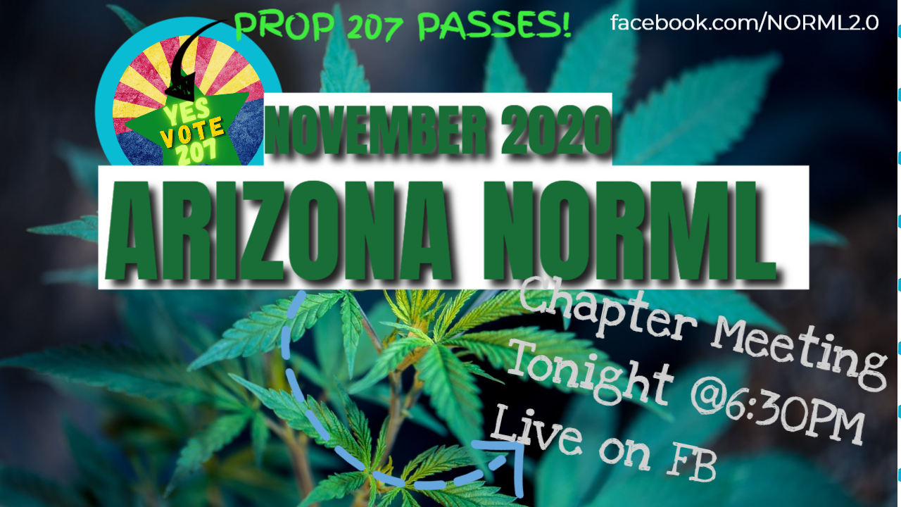 Arizona NORML & Southern Arizona NORML Joint Chapter Meeting November 2020